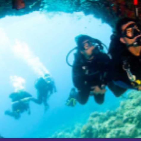 Certificado Scuba Diving